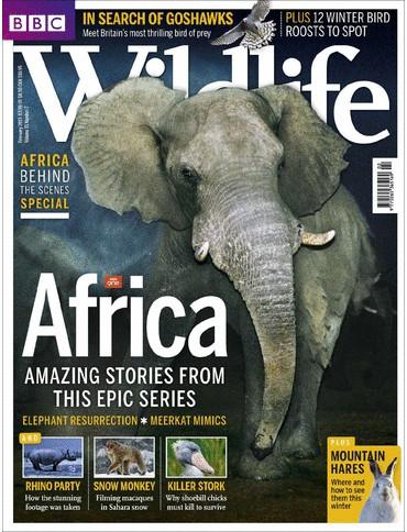 BBC Wildlife  aanbiedingen